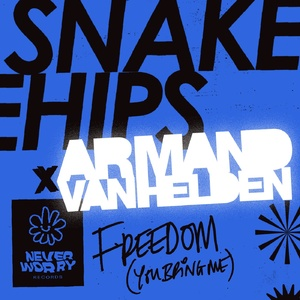 Armand Van Helden, Snakehips - Freedom (You Bring Me) (Extended Mix)